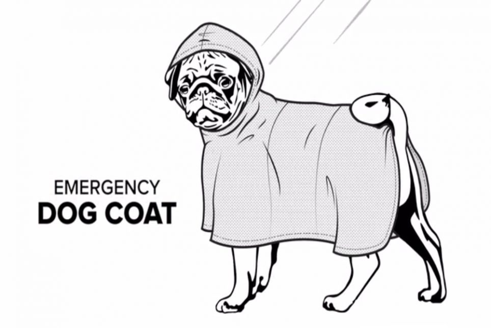 Melbourne_Jacket_Can_Protect_Small_Dogs_From_The_Rain.jpg