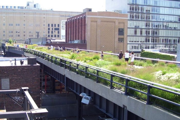 The High Line Designers Have Created A New Network Platform To Help Future Parks Avoid Mistakes