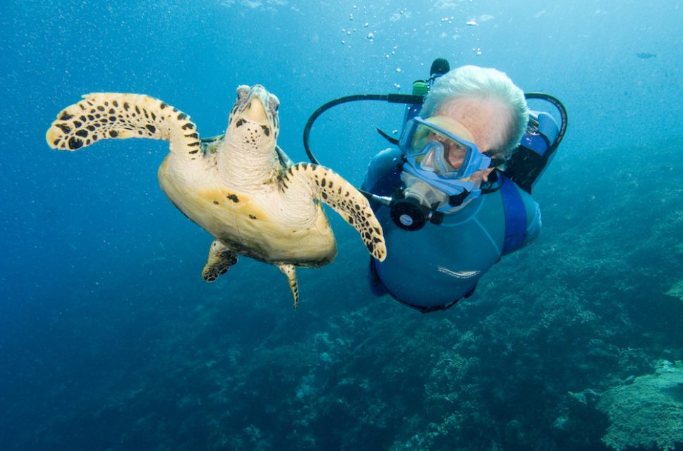 Jean-Michel Cousteau with Hawksbill Turtle