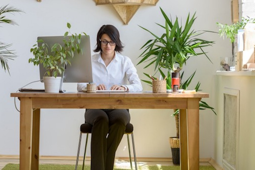 office design companies. How Companies From Amazon To Delos Are Incorporating Biophilic Office Design  Support Employee Wellness Office Design Companies M